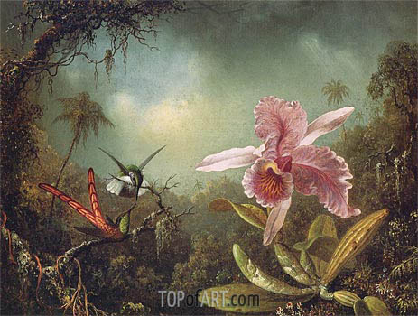 Orchid with Two Hummingbirds, 1871 | Martin Johnson Heade | Painting Reproduction