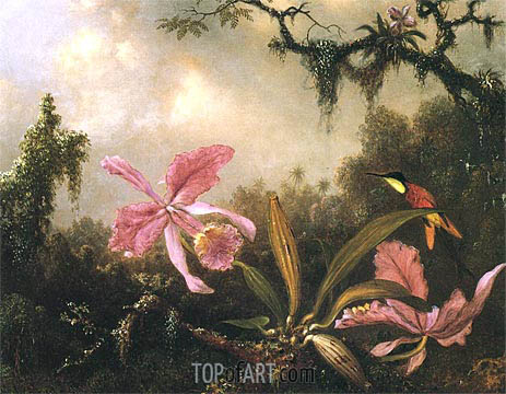 Orchids and Crimson Topaz Hummingbird, 1871 | Martin Johnson Heade | Painting Reproduction