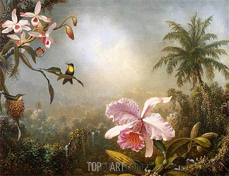Martin Johnson Heade | Orchids, Nesting Hummingbirds and a Butterfly, 1871