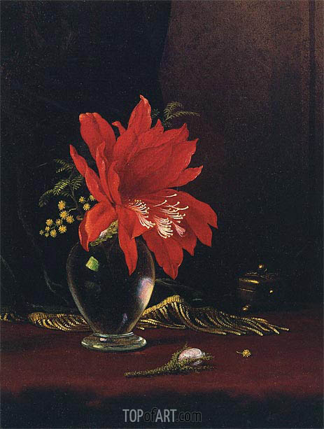 Red Flower In A Vase Martin Johnson Heade Painting Reproduction