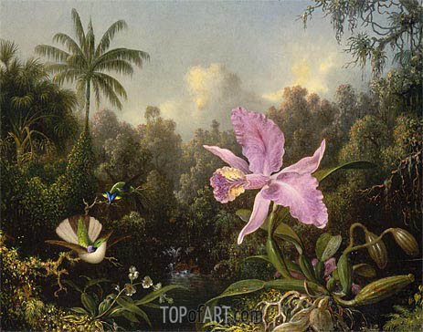 Martin Johnson Heade | Orchid and Two Hummingbirds, 1872