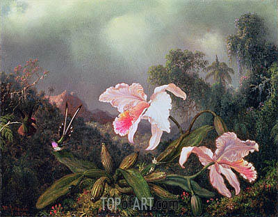Jungle Orchids and Hummingbirds, 1872 | Martin Johnson Heade| Painting Reproduction