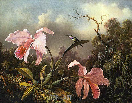 Orchids and Hummingbird, 1872 | Martin Johnson Heade | Gemälde Reproduktion