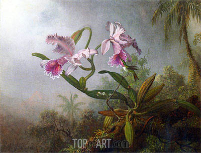 Martin Johnson Heade | Pink Orchids and Hummingbird on a Twig, 1875