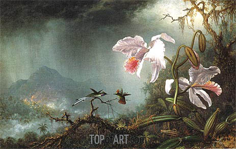 Two Fighting Hummingbirds with Two Orchids, 1875 | Martin Johnson Heade | Painting Reproduction