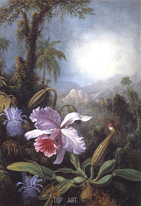 Martin Johnson Heade | Orchids, Passion Flowers and Hummingbird, c.1875/90