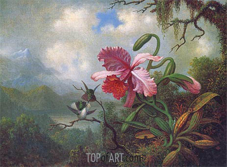 Orchid and Hummingbirds near a Mountain Lake, c.1875/90 | Martin Johnson Heade | Painting Reproduction