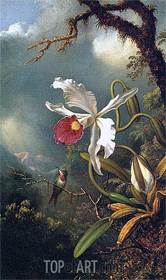 An Amethyst Hummingbird with a White Orchid, c.1875/90 | Martin Johnson Heade | Painting Reproduction