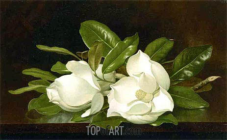 Magnolias on a Wooden Table, c.1883/88 | Martin Johnson Heade | Gemälde Reproduktion
