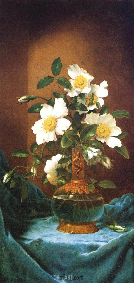 Martin Johnson Heade | White Cherokee Roses in a Salamander Vase, c.1883/95