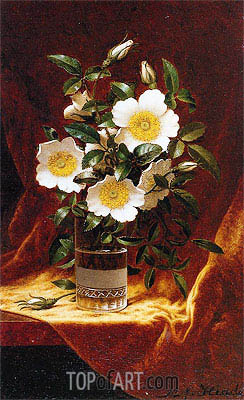 Cherokee Roses in a Glass, c.1883/95 | Martin Johnson Heade | Painting Reproduction