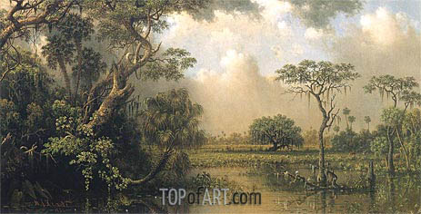 Martin Johnson Heade | The Great Florida Marsh, 1886