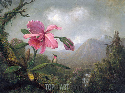 Martin Johnson Heade | Orchid and Hummingbird near Mountain Waterfall, 1902