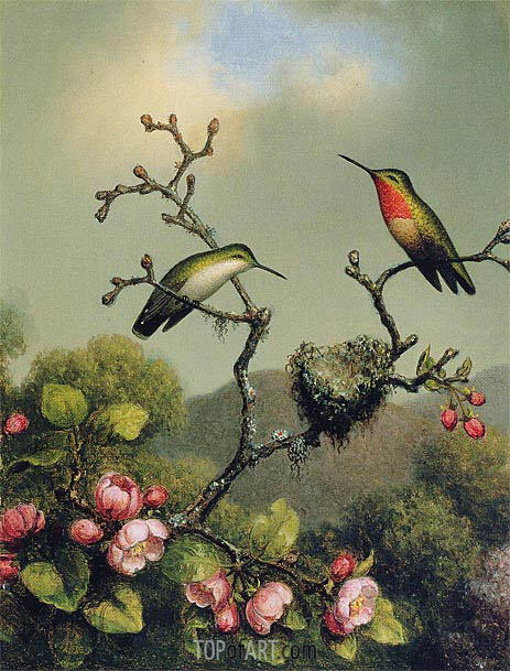 Ruby Throat of North America, 1865 | Martin Johnson Heade | Painting Reproduction