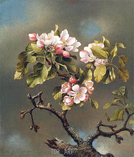 Branch of Apple Blossoms against a Cloudy Sky, 1867 | Martin Johnson Heade | Painting Reproduction