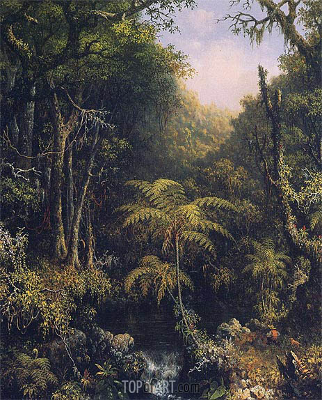 The Brazilian Rain Forest, 1864 | Martin Johnson Heade | Gemälde Reproduktion