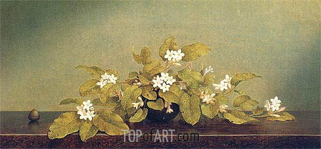 Trailing Arbutus, 1860 | Martin Johnson Heade | Painting Reproduction