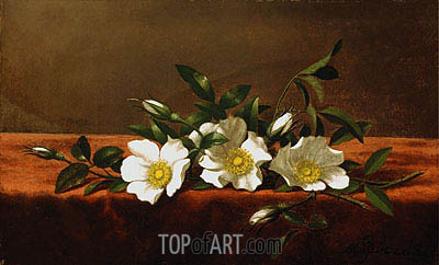 Cherokee Roses, c.1890 | Martin Johnson Heade | Painting Reproduction