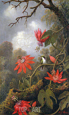 Hummingbird and Passionflowers, c.1875/85 | Martin Johnson Heade | Painting Reproduction