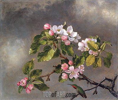 Martin Johnson Heade | Hummingbird and Apple Blossoms, 1875