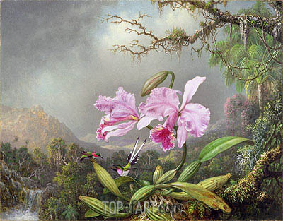 Study of an Orchid, 1872 | Martin Johnson Heade| Painting Reproduction