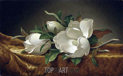 Magnolias on Gold Velvet Cloth, c.1888/90 | Martin Johnson Heade | Painting Reproduction