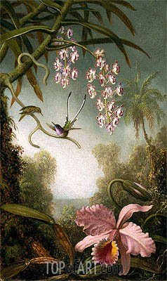 Orchids and Spray Orchids with Hummingbirds, c.1875/90 | Martin Johnson Heade | Painting Reproduction