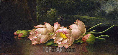 Lotus Flowers: A Landscape Painting in the Background, c.1885/00 | Martin Johnson Heade | Painting Reproduction