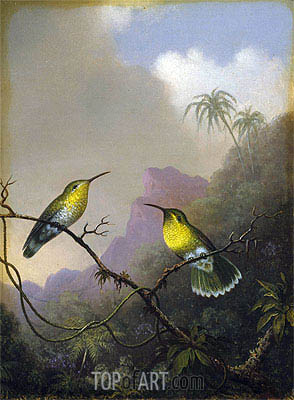 Two Humming Birds: 'Copper-tailed Amazili', c.1865/75 | Martin Johnson Heade| Painting Reproduction