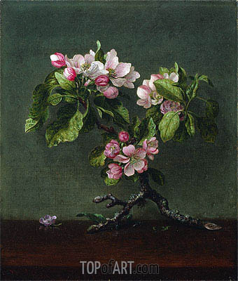 Apple Blossoms, 1873 | Martin Johnson Heade | Painting Reproduction
