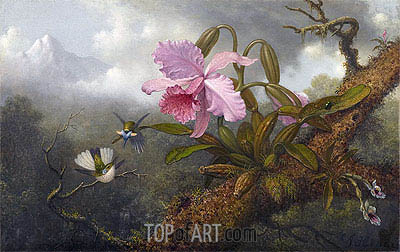 Cattleya Orchid, Two Hummingbirds and a Beetle, c.1875/90 | Martin Johnson Heade| Painting Reproduction