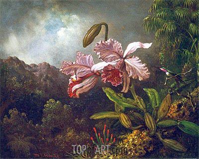 Orchids in a Jungle, 1870s | Martin Johnson Heade| Painting Reproduction