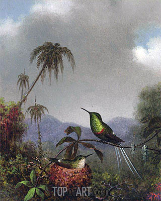 Two Thorn-Tails (Langsdorffs Thorn-Tail Brazil), c.1864/65 | Martin Johnson Heade| Painting Reproduction