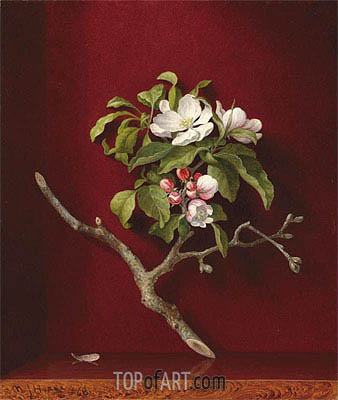 Apple Blossoms in a Corner, 1868 | Martin Johnson Heade | Gemälde Reproduktion