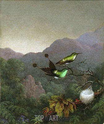 Racket-Tail Brazil, c.1863/65 | Martin Johnson Heade| Painting Reproduction