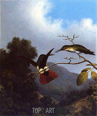 Black-Throated Mango, c.1864/65  | Martin Johnson Heade | Painting Reproduction