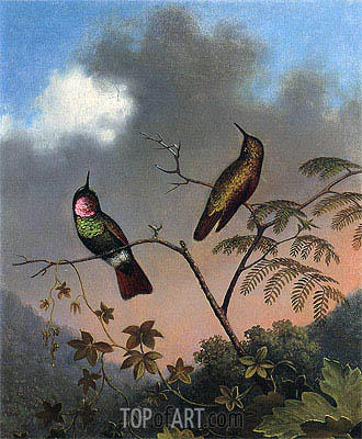 Brazilian Ruby Hummingbirds, c.1864/65  | Martin Johnson Heade | Painting Reproduction