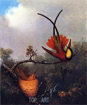 Martin Johnson Heade | Crimson Topaz, c.1864/65