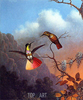 Hooded Visorbearer, c.1864/65  | Martin Johnson Heade | Painting Reproduction