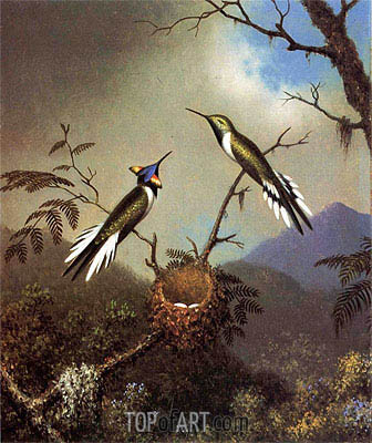 Hummingbirds at Their Nest - Sun Gems, c.1864/65  | Martin Johnson Heade | Painting Reproduction