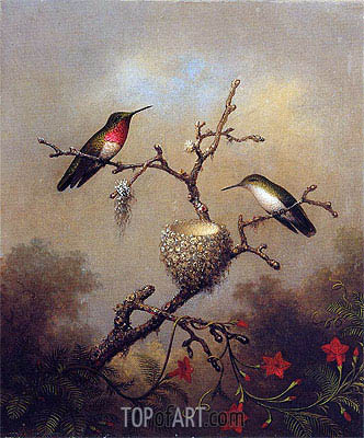 Ruby-Throated Hummingbird, c.1864/65  | Martin Johnson Heade | Painting Reproduction
