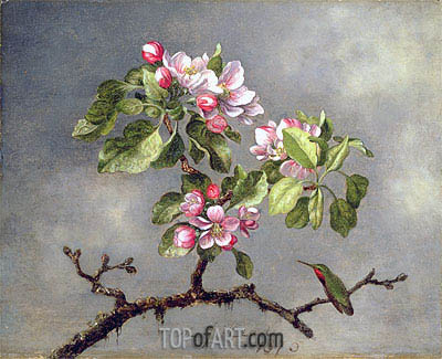 Apple Blossoms and a Hummingbird, 1875 | Martin Johnson Heade| Painting Reproduction