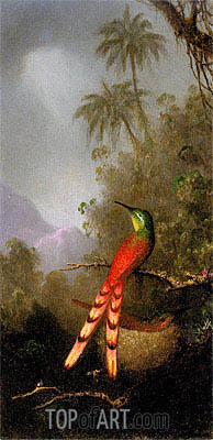 Red-Tailed Comet (hummingbird) in the Andes, c.1883 | Martin Johnson Heade | Painting Reproduction