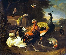 A Cockerel with other Birds, c.1668/95 by Melchior d'Hondecoeter | Painting Reproduction