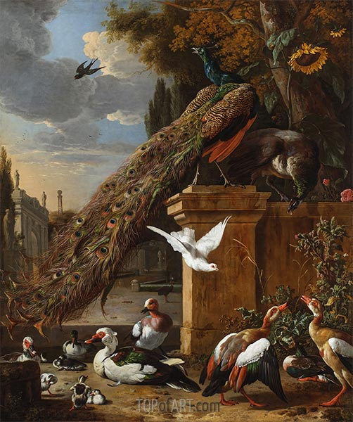Peacocks and Ducks, c.1680 | Melchior d'Hondecoeter | Painting Reproduction