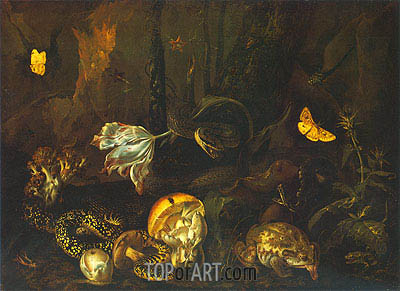 Still Life with Insects and Amphibians, 1662 | van Schrieck | Gemälde Reproduktion