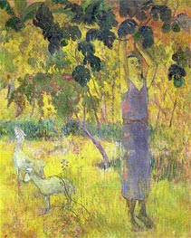 Man Picking Fruit from a Tree | Gauguin | Gemälde Reproduktion