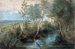 Landscape with Stream Overhung with Trees, c.1637/40 by Rubens | Painting Reproduction