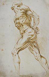 Anatomical Study (A Nude Striding to the Right) | Rubens | veraltet