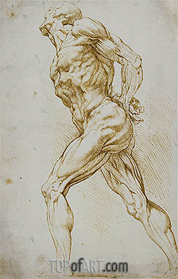 Anatomical Study (A Nude Striding to the Right), undated | Rubens| Painting Reproduction